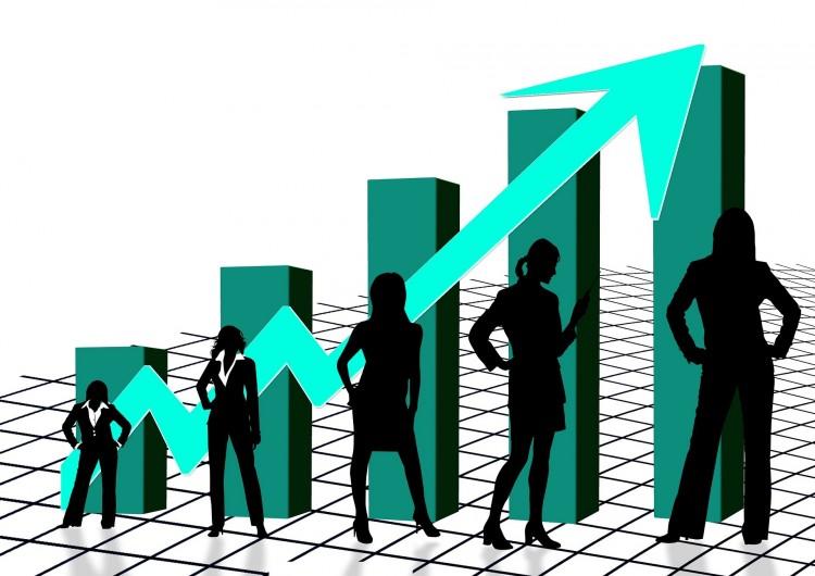 Mehr Frauen in Führung, Frauenquote