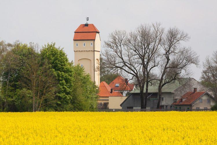 Rapsfeld mit Dorf Kommune mit Zukunft - Gender Award