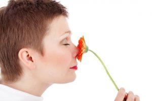 Blume riechen
