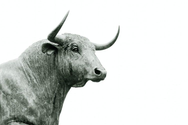 Erfolgreich investieren ohne Finanzkenntnisse