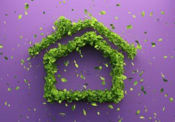 Startup 50plus: Erfinder für nachhaltiges Bauen