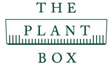 THE PLANT BOX: Nachhaltige Balkonkästen inkl. Bepflanzung